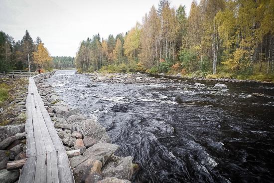 4_finlandia.jpg