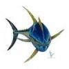 Troć morska . ... jak łowić... - ostatni post przez Maraky