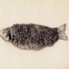 Szukam płytko chodzących jerków (pływających) - ostatni post przez marsjanix
