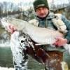 trout master - zdjęcie